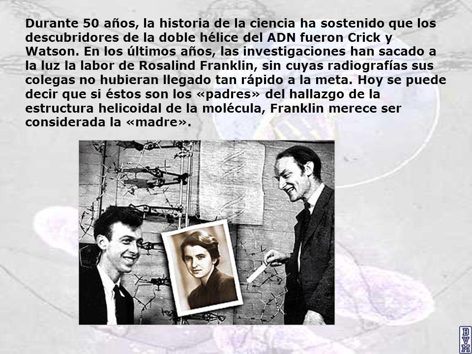 Durante 50 años, la historia de la ciencia ha sostenido que los descubridores de la doble hélice del ADN fueron Crick y Watson.