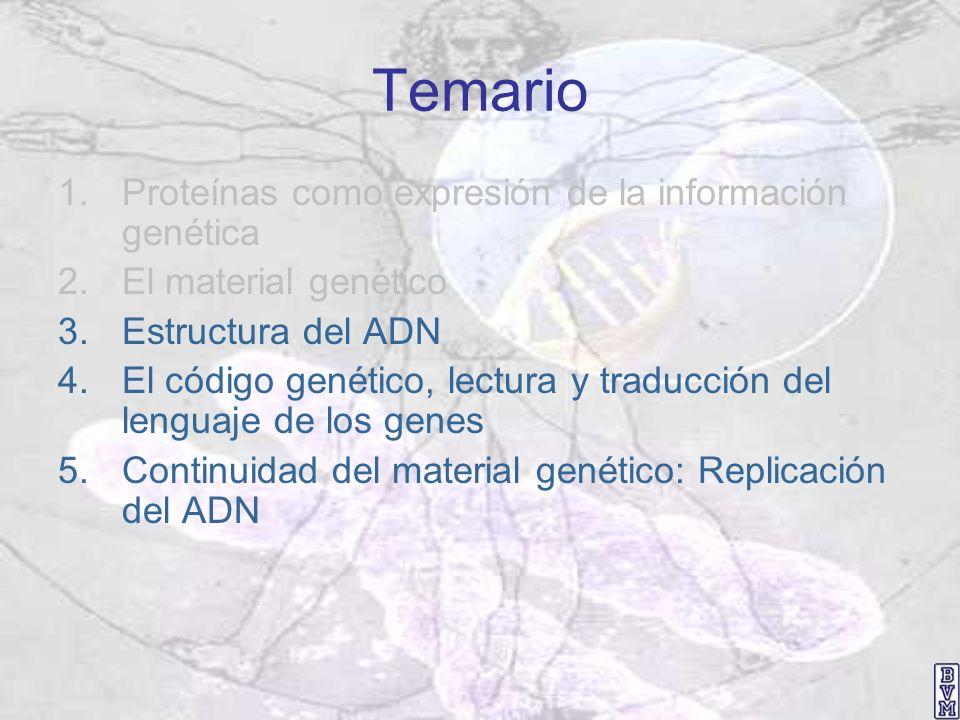 Temario Proteínas como expresión de la información genética