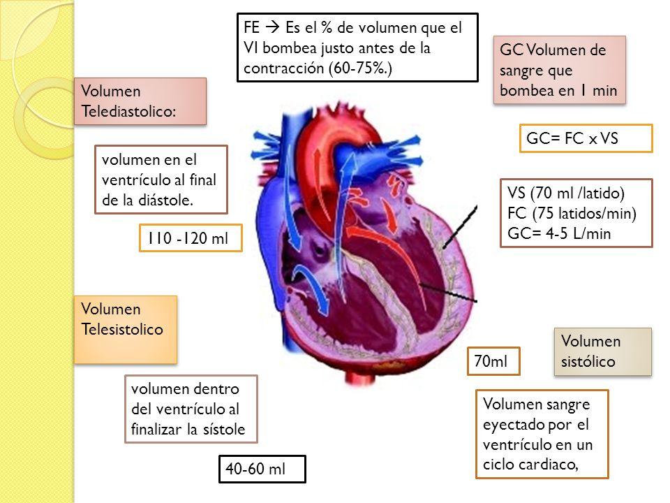 FE  Es el % de volumen que el VI bombea justo antes de la contracción (60-75%.)