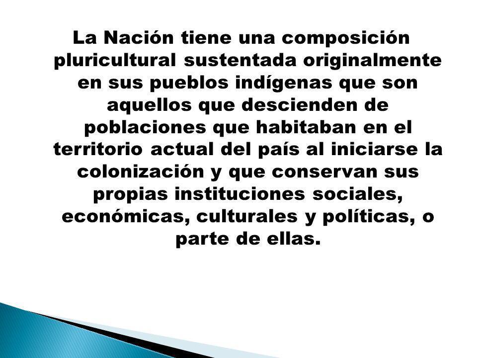 La Nación tiene una composición pluricultural sustentada originalmente en sus pueblos indígenas que son aquellos que descienden de poblaciones que habitaban en el territorio actual del país al iniciarse la colonización y que conservan sus propias instituciones sociales, económicas, culturales y políticas, o parte de ellas.