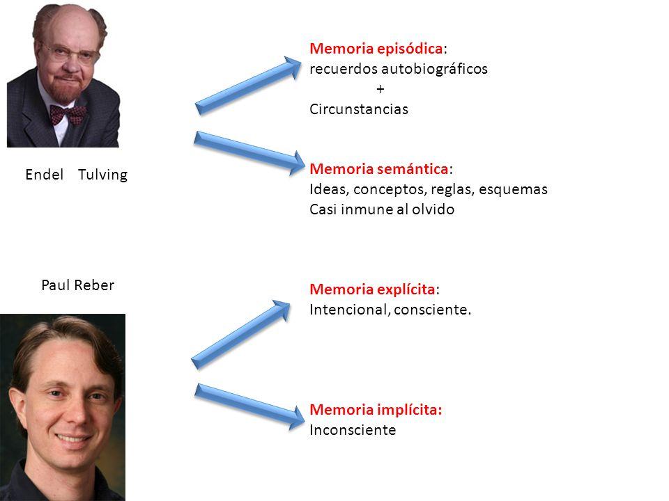 Memoria episódica: recuerdos autobiográficos. + Circunstancias. Memoria semántica: Ideas, conceptos, reglas, esquemas.