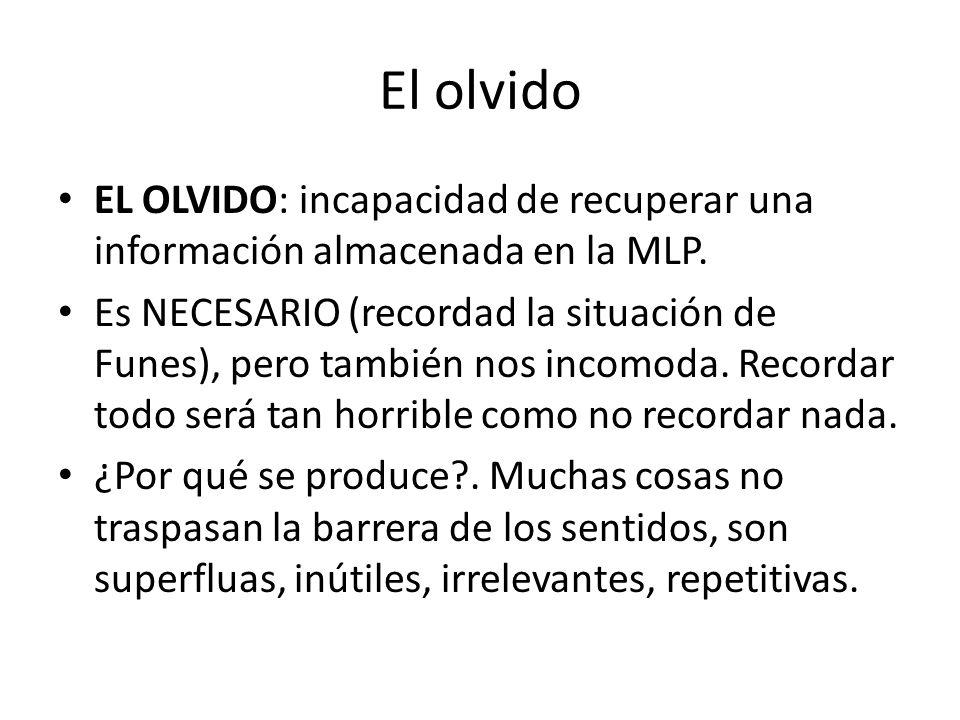 El olvido EL OLVIDO: incapacidad de recuperar una información almacenada en la MLP.