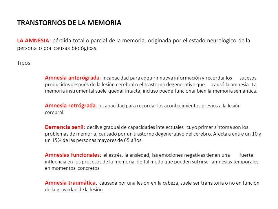 TRANSTORNOS DE LA MEMORIA