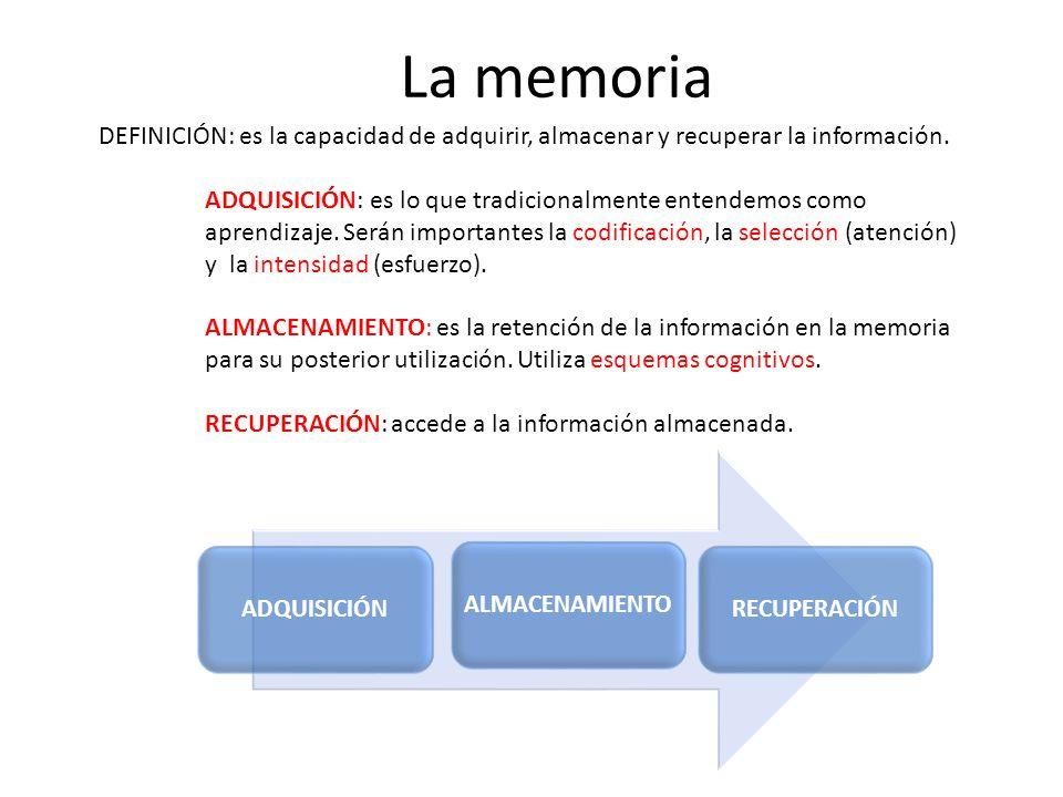 La memoria DEFINICIÓN: es la capacidad de adquirir, almacenar y recuperar la información.