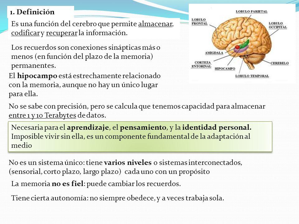 1. DefiniciónEs una función del cerebro que permite almacenar, codificar y recuperar la información.