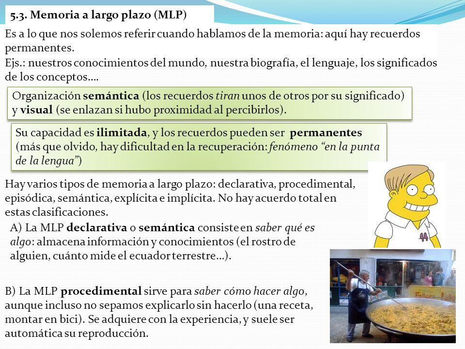 5.3. Memoria a largo plazo (MLP)