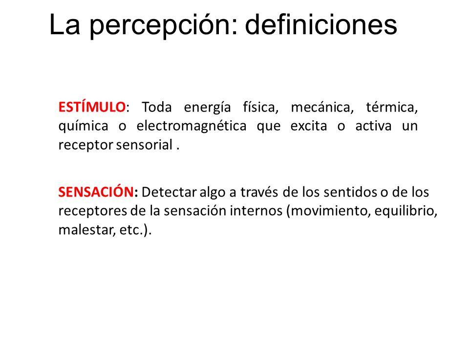 La percepción: definiciones