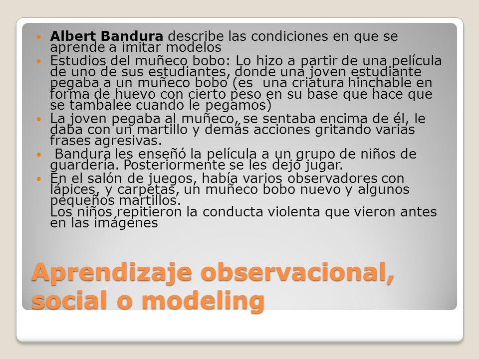 Aprendizaje observacional, social o modeling