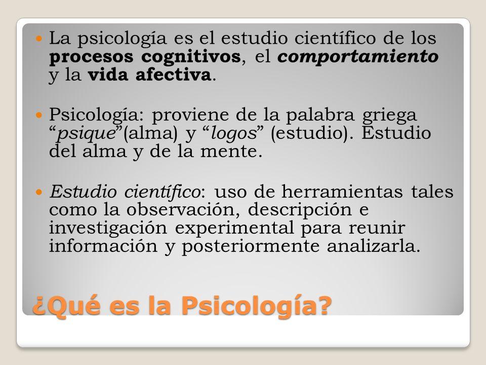 La psicología es el estudio científico de los procesos cognitivos, el comportamiento y la vida afectiva.