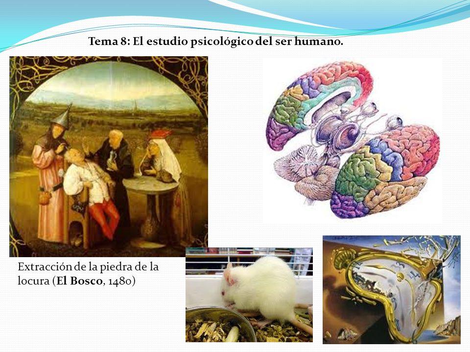 Tema 8: El estudio psicológico del ser humano.
