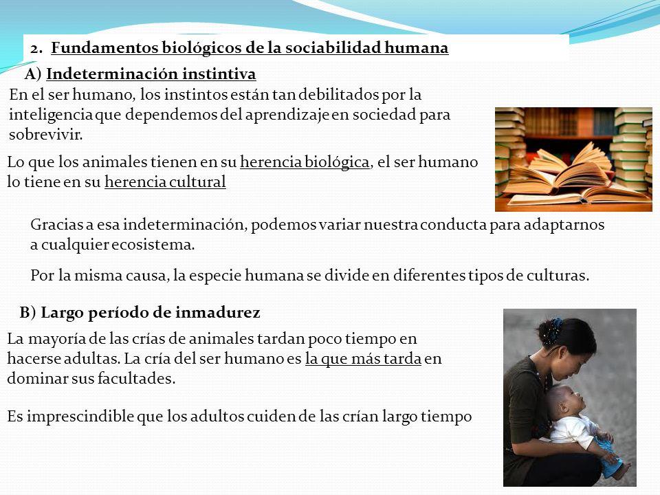 2. Fundamentos biológicos de la sociabilidad humana