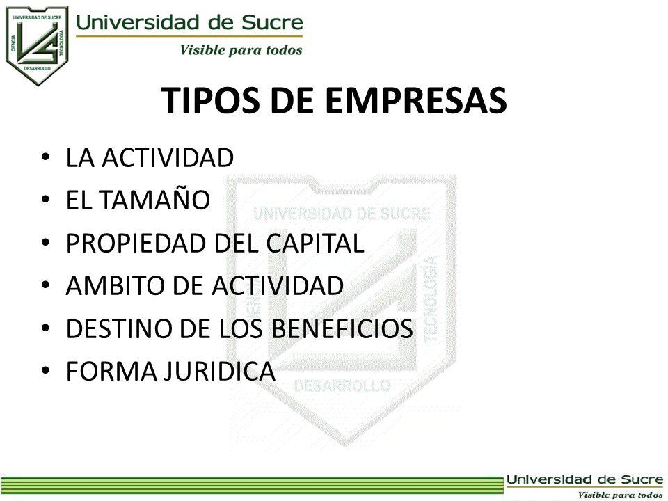 TIPOS DE EMPRESAS LA ACTIVIDAD EL TAMAÑO PROPIEDAD DEL CAPITAL