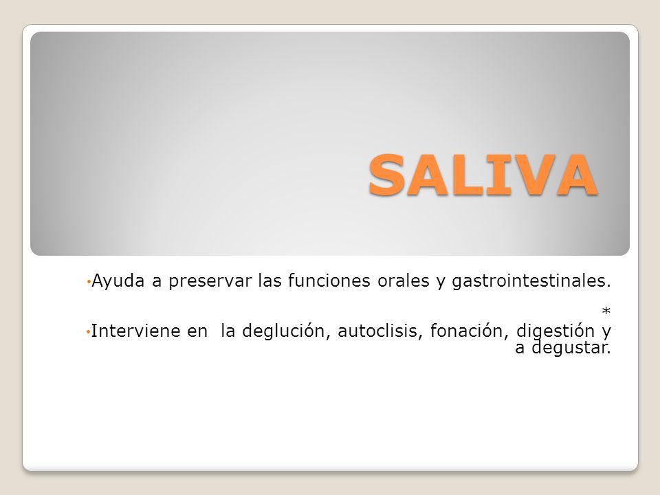 SALIVA Ayuda a preservar las funciones orales y gastrointestinales. *