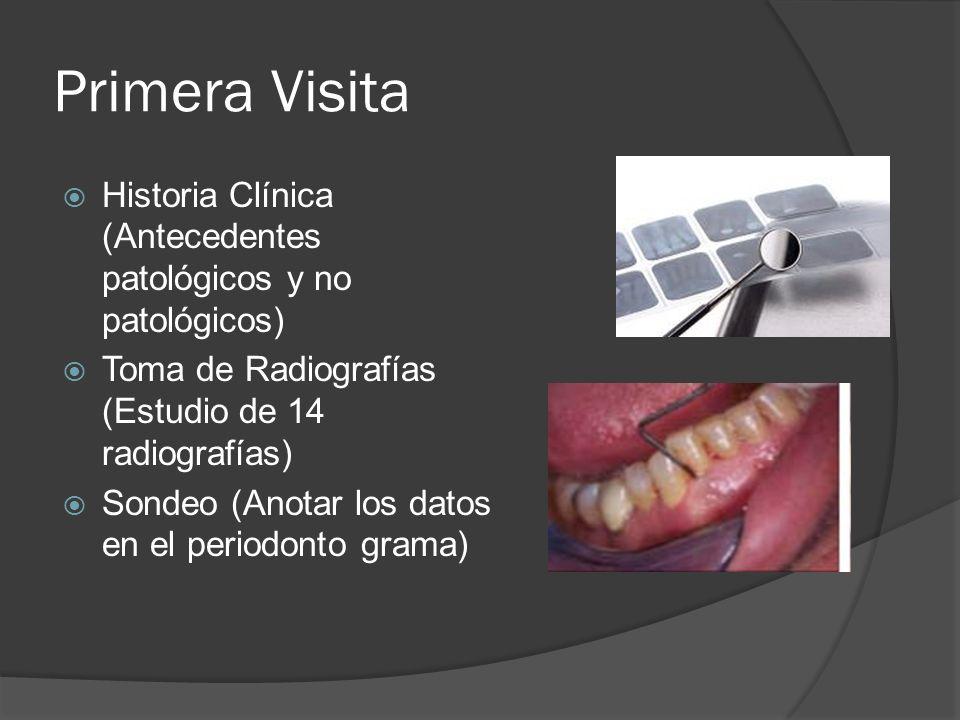 Primera Visita Historia Clínica (Antecedentes patológicos y no patológicos) Toma de Radiografías (Estudio de 14 radiografías)