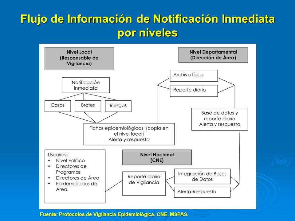 Flujo de Información de Notificación Inmediata por niveles