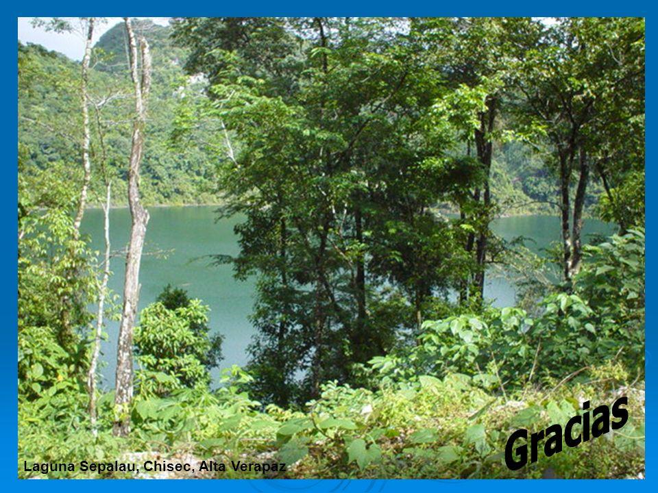 Gracias Laguna Sepalau, Chisec, Alta Verapaz