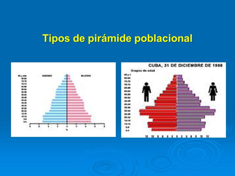 Tipos de pirámide poblacional