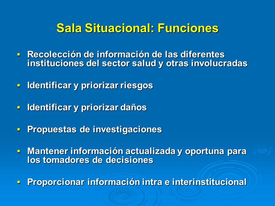 Sala Situacional: Funciones