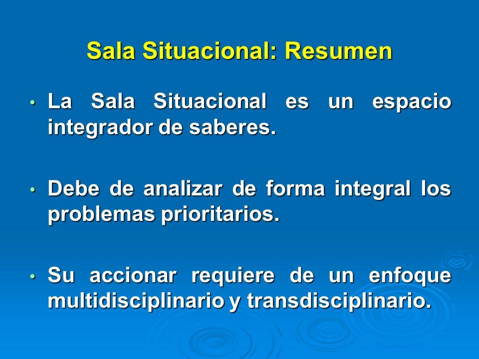 Sala Situacional: Resumen