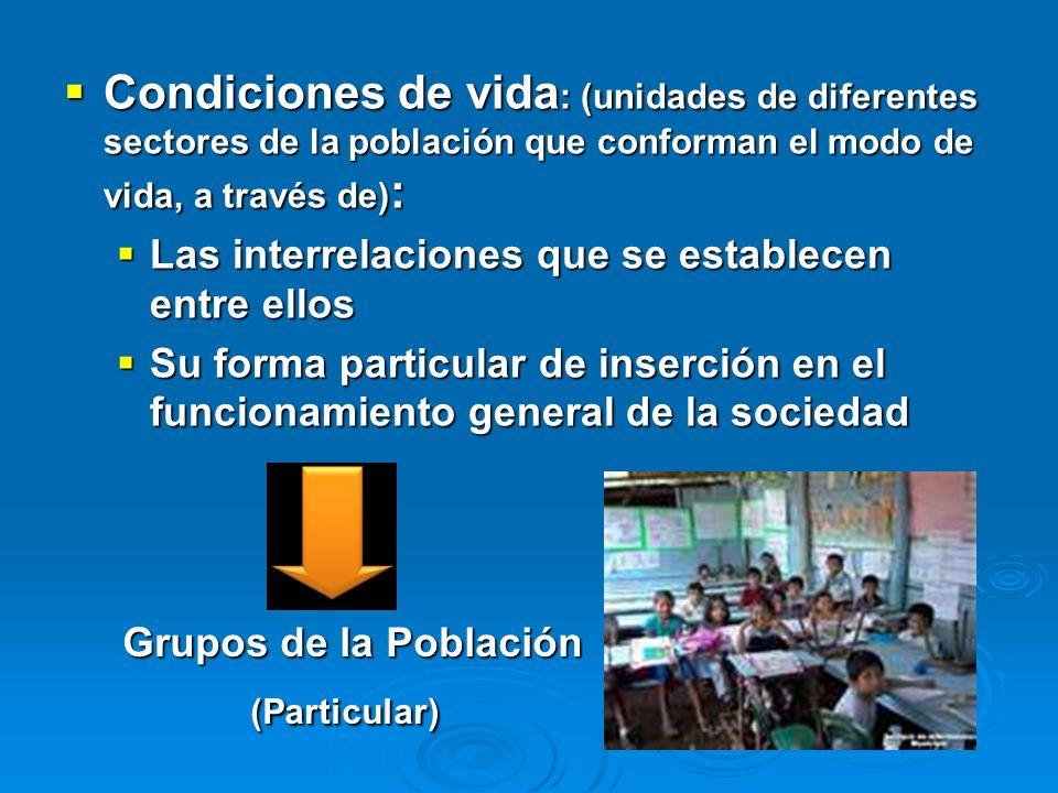 Condiciones de vida: (unidades de diferentes sectores de la población que conforman el modo de vida, a través de):