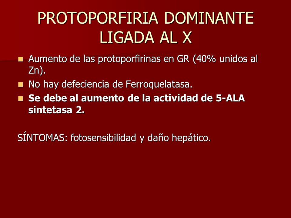 PROTOPORFIRIA DOMINANTE LIGADA AL X