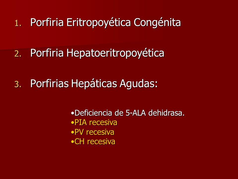 Porfiria Eritropoyética Congénita Porfiria Hepatoeritropoyética