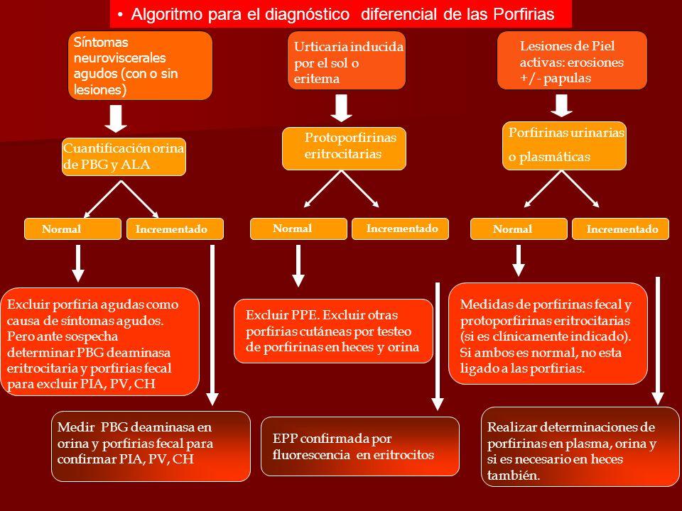 Algoritmo para el diagnóstico diferencial de las Porfirias