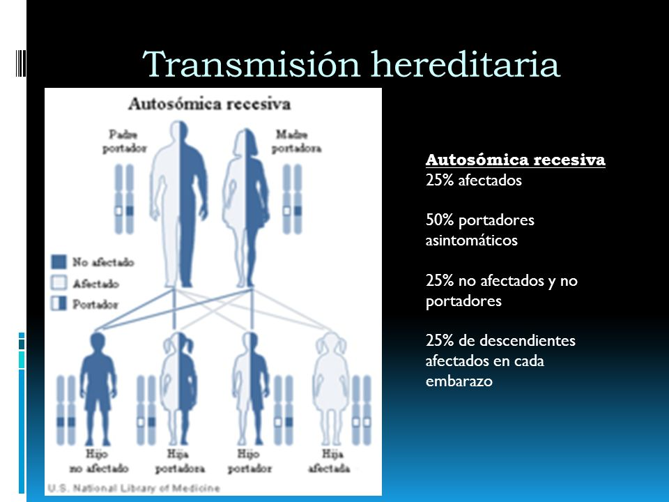 Transmisión hereditaria