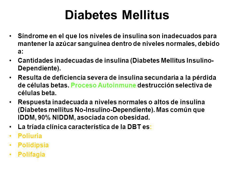 Diabetes Mellitus Síndrome en el que los niveles de insulina son inadecuados para mantener la azúcar sanguínea dentro de niveles normales, debido a: