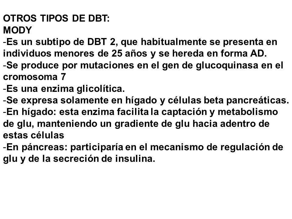 OTROS TIPOS DE DBT:MODY. Es un subtipo de DBT 2, que habitualmente se presenta en individuos menores de 25 años y se hereda en forma AD.