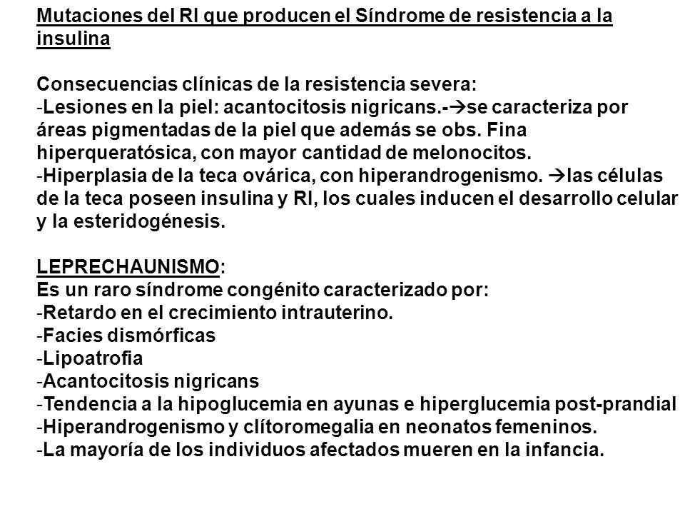 Mutaciones del RI que producen el Síndrome de resistencia a la insulina