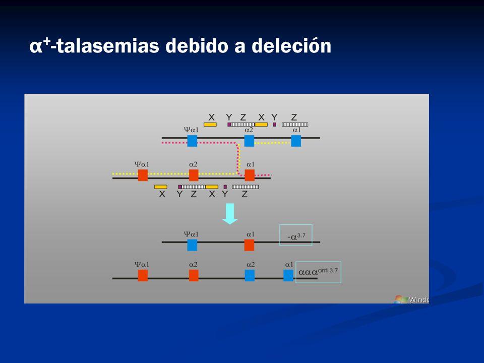 α+-talasemias debido a deleción