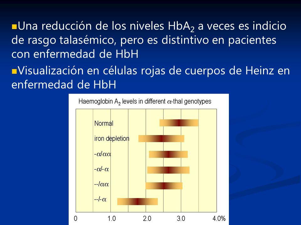 Una reducción de los niveles HbA2 a veces es indicio de rasgo talasémico, pero es distintivo en pacientes con enfermedad de HbH