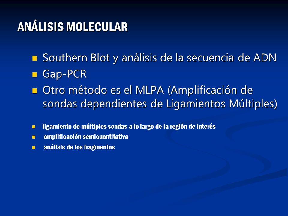 ANÁLISIS MOLECULAR Southern Blot y análisis de la secuencia de ADN