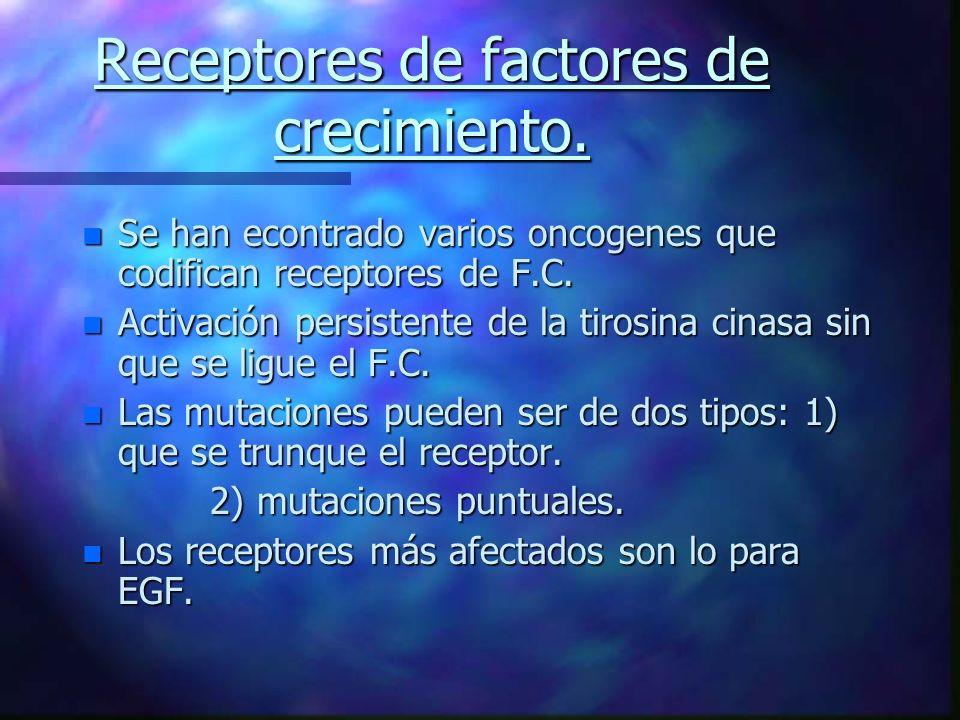 Receptores de factores de crecimiento.