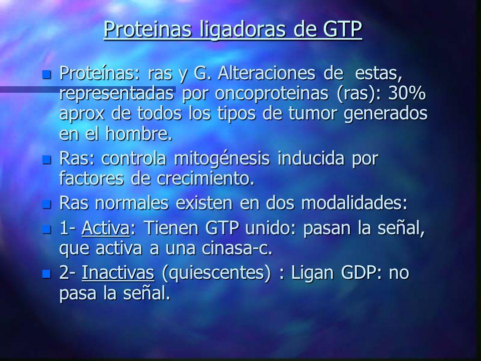 Proteinas ligadoras de GTP