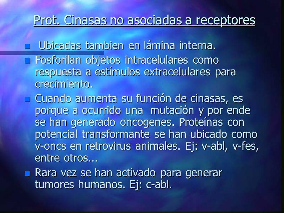 Prot. Cinasas no asociadas a receptores