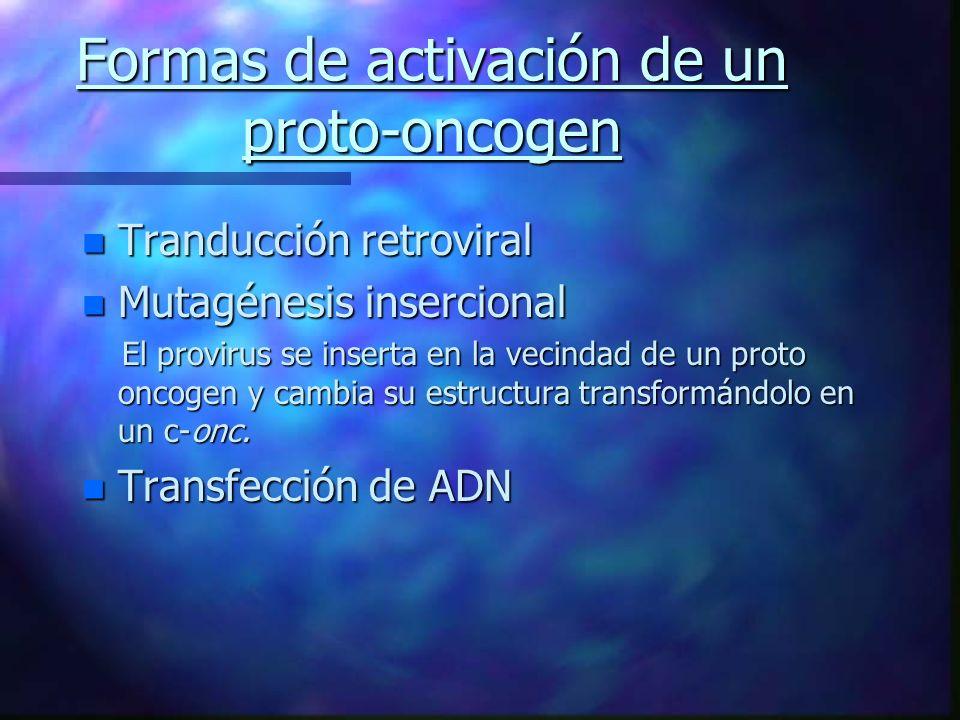 Formas de activación de un proto-oncogen
