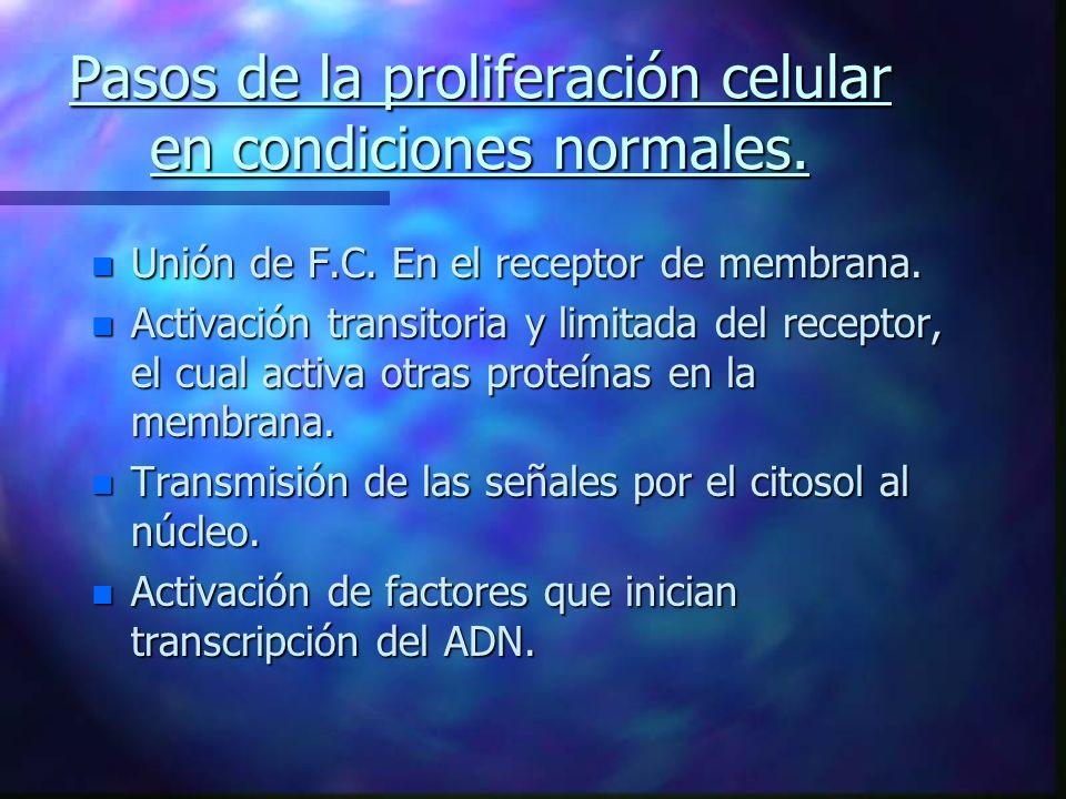Pasos de la proliferación celular en condiciones normales.