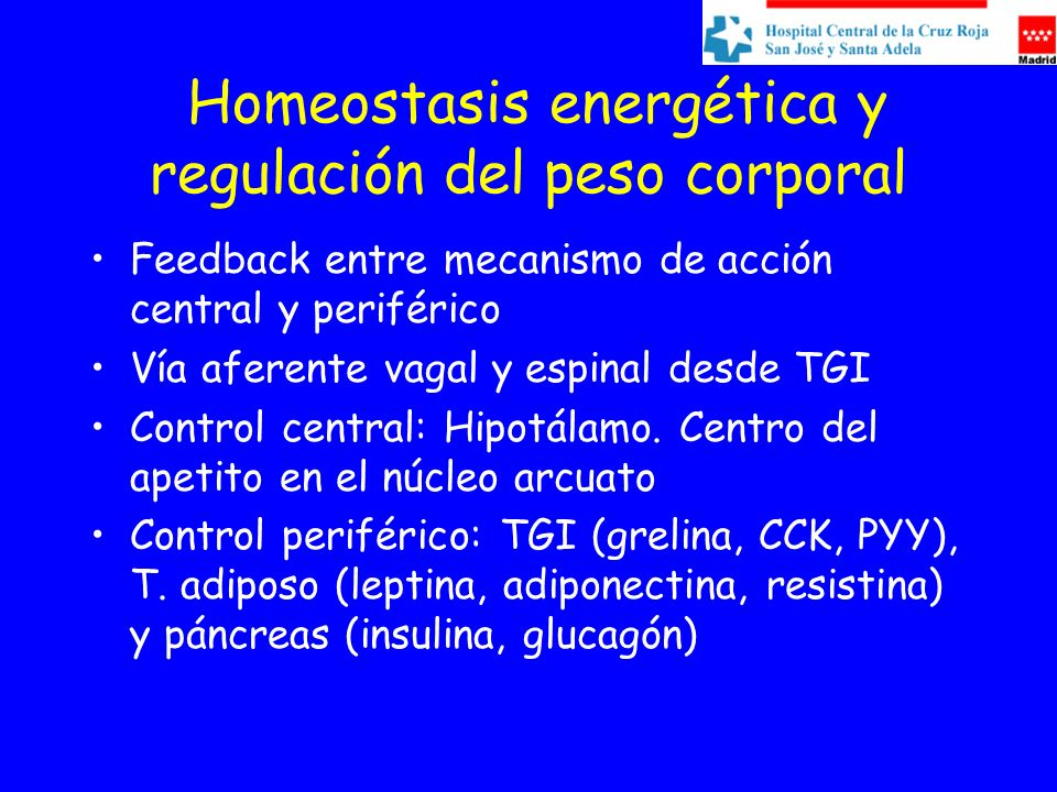 Homeostasis energética y regulación del peso corporal