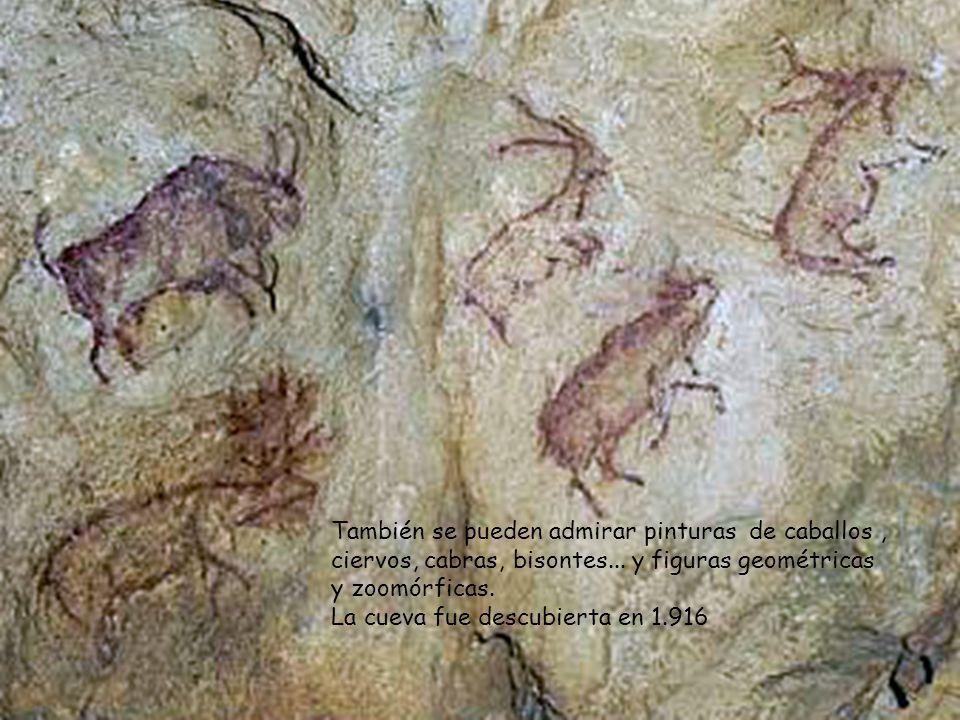 También se pueden admirar pinturas de caballos , ciervos, cabras, bisontes... y figuras geométricas y zoomórficas.