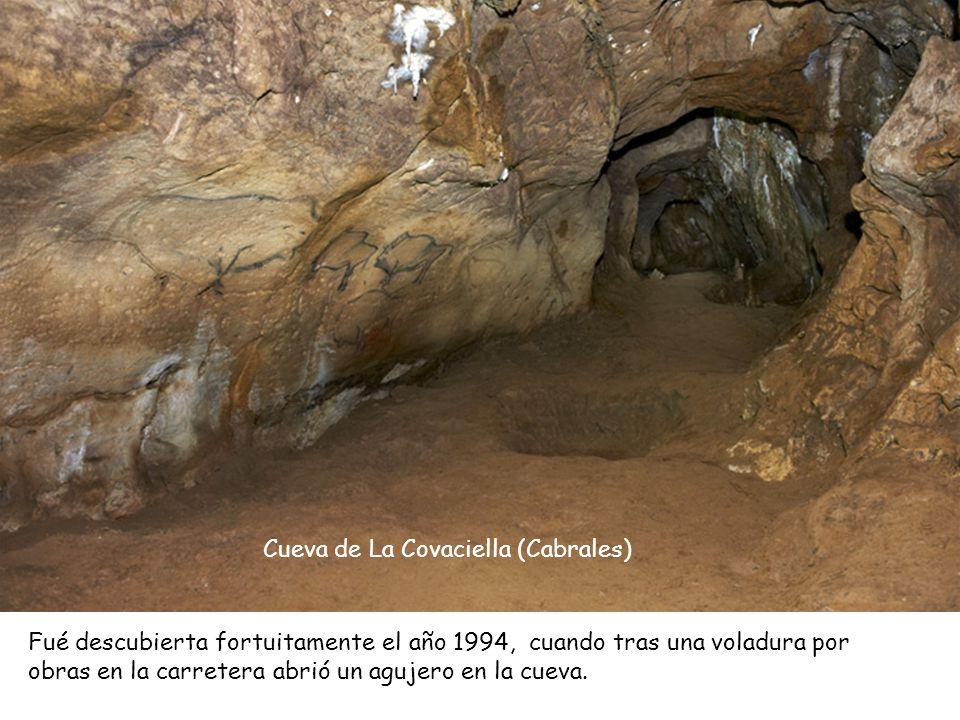 Cueva de La Covaciella (Cabrales)