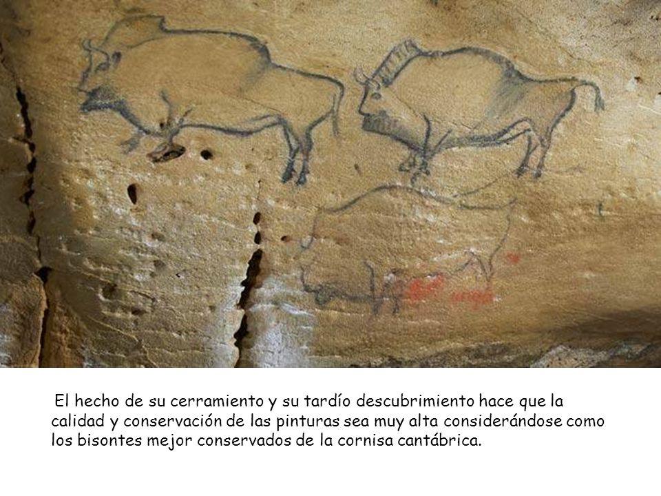 El hecho de su cerramiento y su tardío descubrimiento hace que la calidad y conservación de las pinturas sea muy alta considerándose como los bisontes mejor conservados de la cornisa cantábrica.
