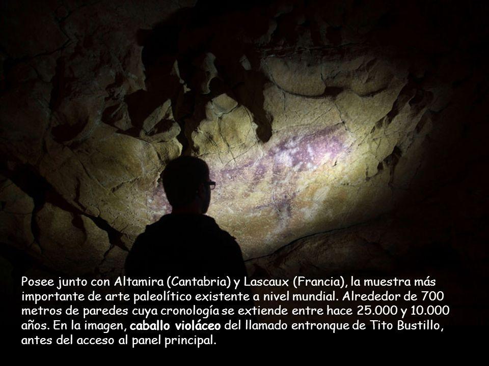 Posee junto con Altamira (Cantabria) y Lascaux (Francia), la muestra más importante de arte paleolítico existente a nivel mundial.