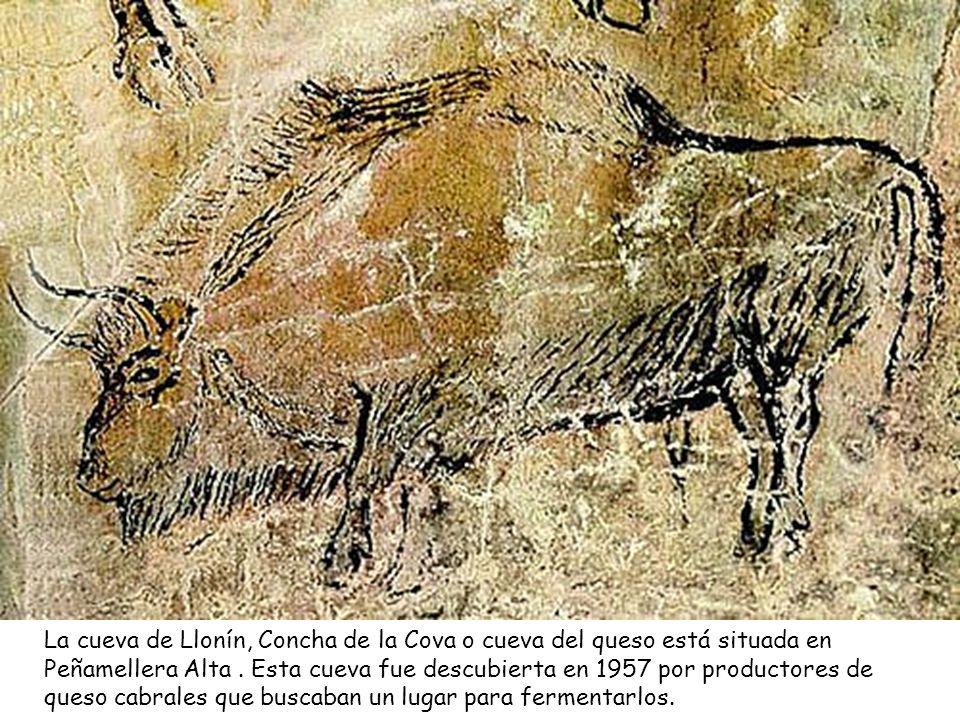 La cueva de Llonín, Concha de la Cova o cueva del queso está situada en Peñamellera Alta .