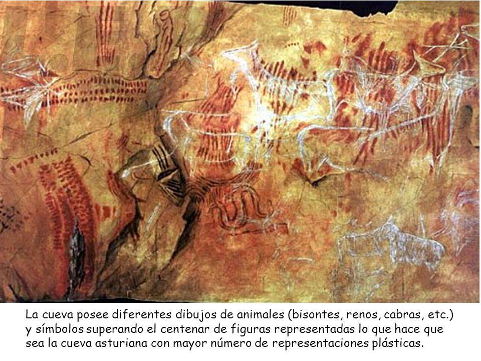La cueva posee diferentes dibujos de animales (bisontes, renos, cabras, etc.) y símbolos superando el centenar de figuras representadas lo que hace que sea la cueva asturiana con mayor número de representaciones plásticas.