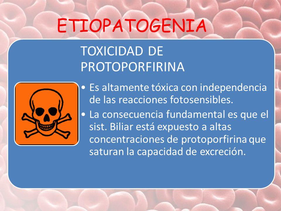 ETIOPATOGENIA TOXICIDAD DE PROTOPORFIRINA
