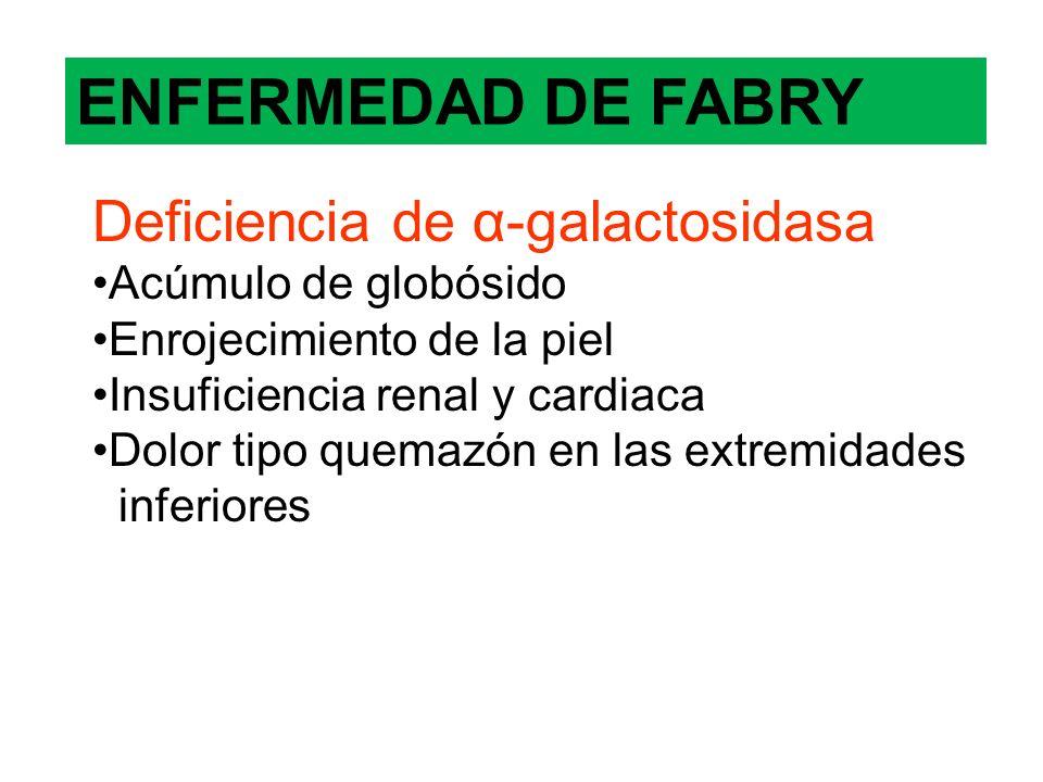 ENFERMEDAD DE FABRY Deficiencia de α-galactosidasa