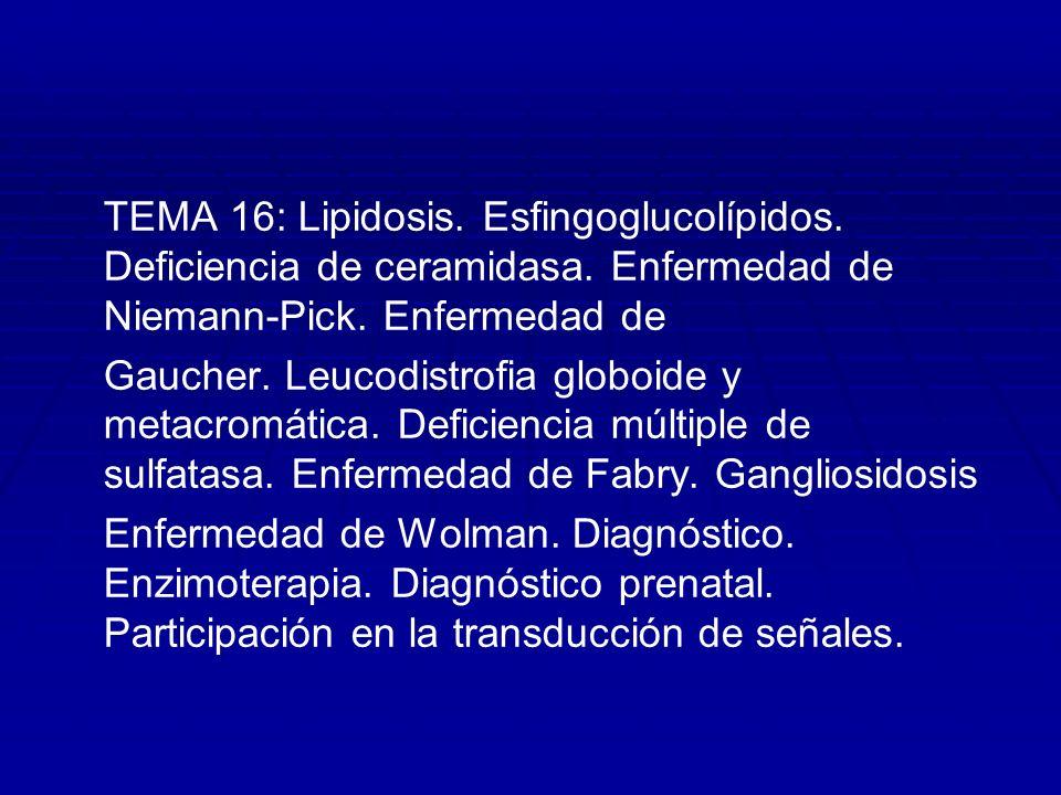 TEMA 16: Lipidosis. Esfingoglucolípidos. Deficiencia de ceramidasa