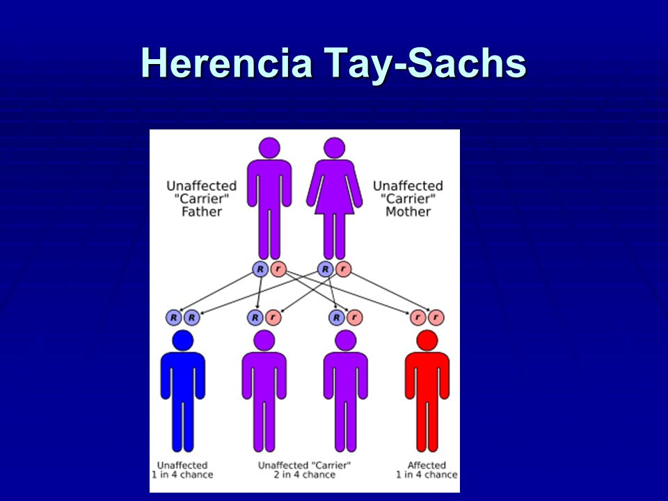 Herencia Tay-Sachs
